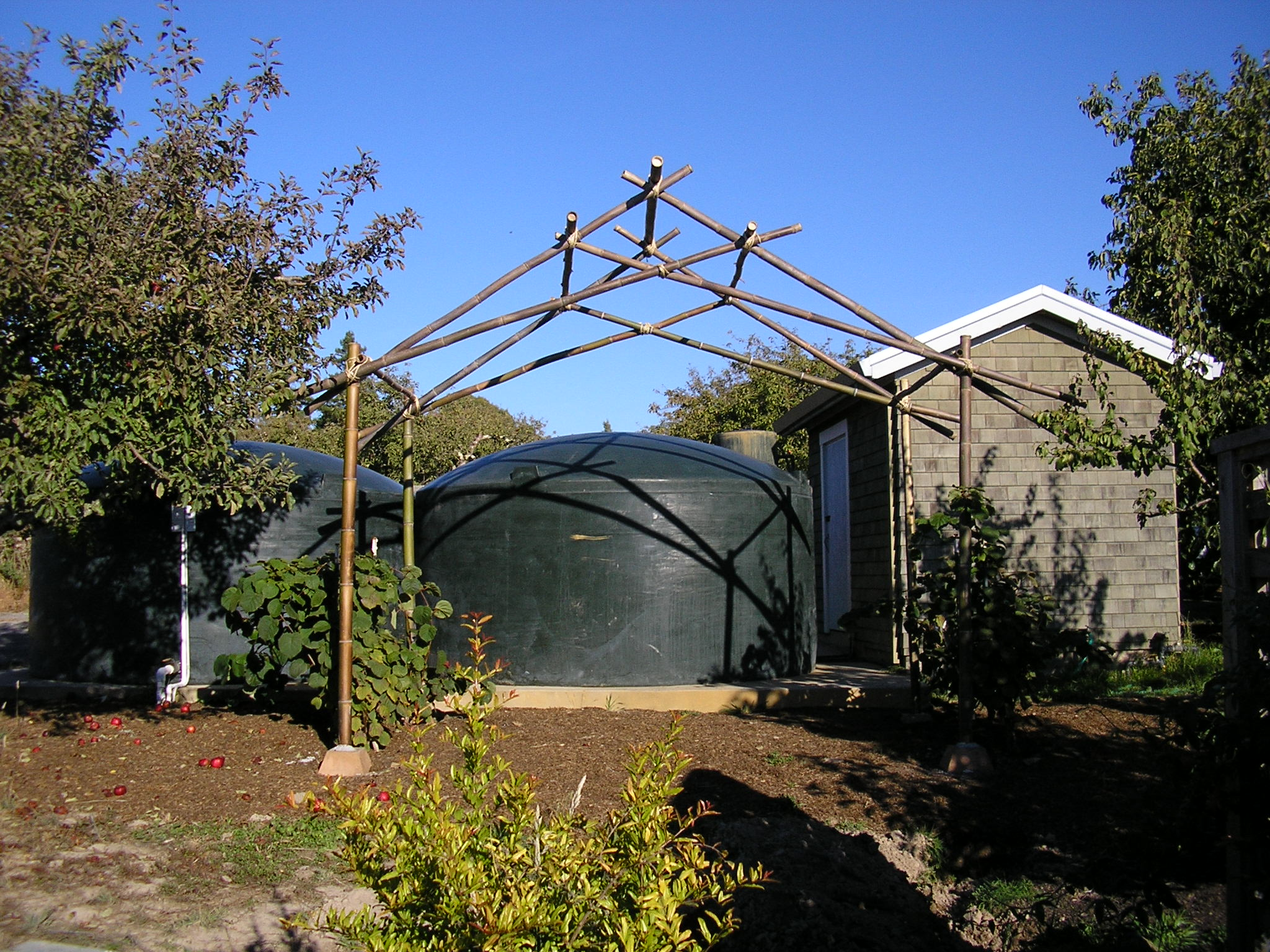 Here is a kiwi arbor built by Sebastian Collet and MML (See link to Seb's site on the right).